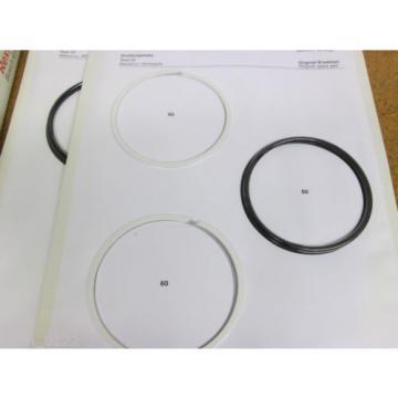 Rexroth China Italy 1817010279 Seal Kits New
