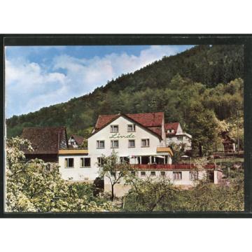 schöne AK Langenthal, Waldpartie mit Blick zum Gasthaus-Pension Zur Linde