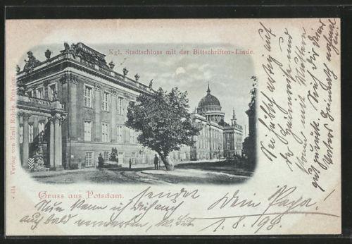 tolle Mondschein-AK Potsdam, Kgl. Stadtschloss mit der Bittschriften-Linde 1898