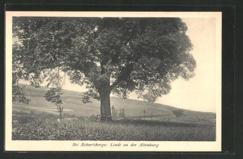tolle AK Eckartsberga, Linde an der Altenburg