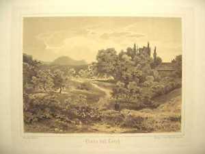 1 Orig.Getö.Litho.R.Stieler 1875 LINDE BEI LORCH