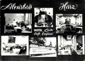 Ak Alexisbad Harzgerode am Harz, Hotel Linde, Cafe Exquisit,... - 1344229