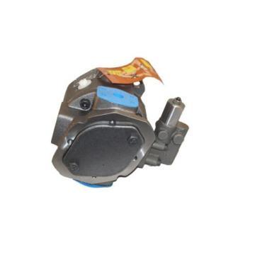 New Schwing Hydraulic Pump 30364139 10202812 r9024361062 Rexroth Bosch
