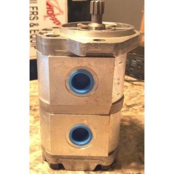 2PF2G250-008-008LR12MRS, Mexico France Rexroth Double Hydraulic Pump, .488 cu in3/rev