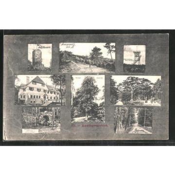 remarquable CPA Anningerhaus, Wilhelmswarte, Krauste Linde, Buchenwald