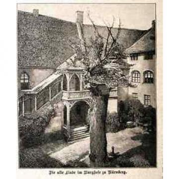 ALTE LINDE Burghof Nürnberg Baum Linden 1894 HST+Text