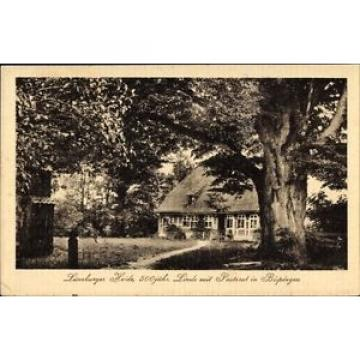 Ak Bispingen in Niedersachsen, Linde mit Pastorat - 1703320