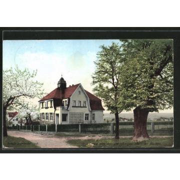 tolle AK Dresden-Rockau, Villa mit 400 jähriger Linde