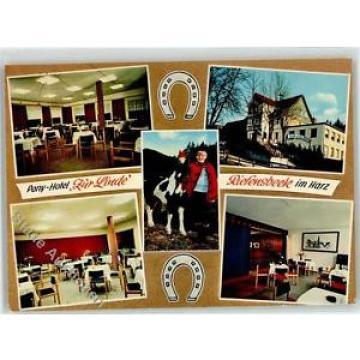 51885601 - Riefensbeek Pony Hotel zur Linde  Preissenkung