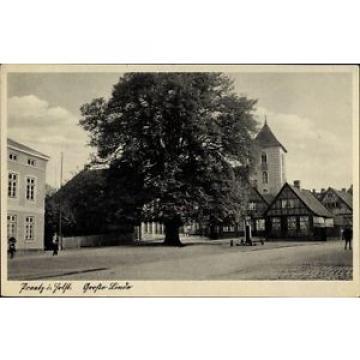Ak Preetz in Schleswig Holstein, Große Linde, Kirchturm - 1168870