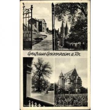 Ak Geisenheim am Rhein Hessen, Pomologie, Dom, 600 jährige Linde,... - 1544093