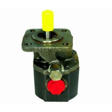 Northern Tool Haldex/Concentric Hydraulic Gear Pump, 2670017, 4B5